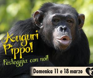 bioparco roma compleanno pippo