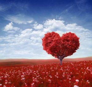 come-festeggiare-san-valentino-roma